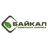 Logo baikal