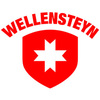 Logo wellensteyn logo 320