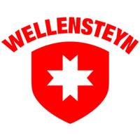 Qr wellensteyn logo 320