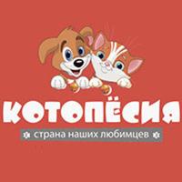 Qr kotopes logo2