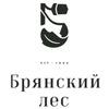 Logo bryanskiyles logo 300
